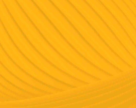 Comment regarder netflix sur la tv orange