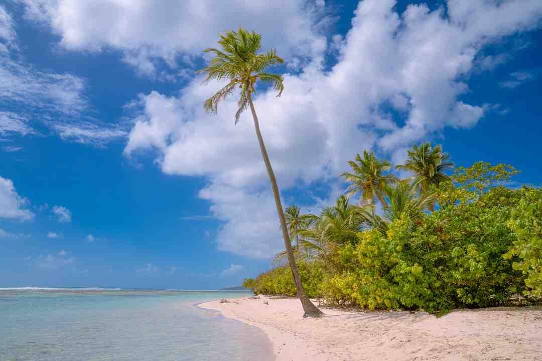 Quel forfait mobile pour la Guadeloupe ?