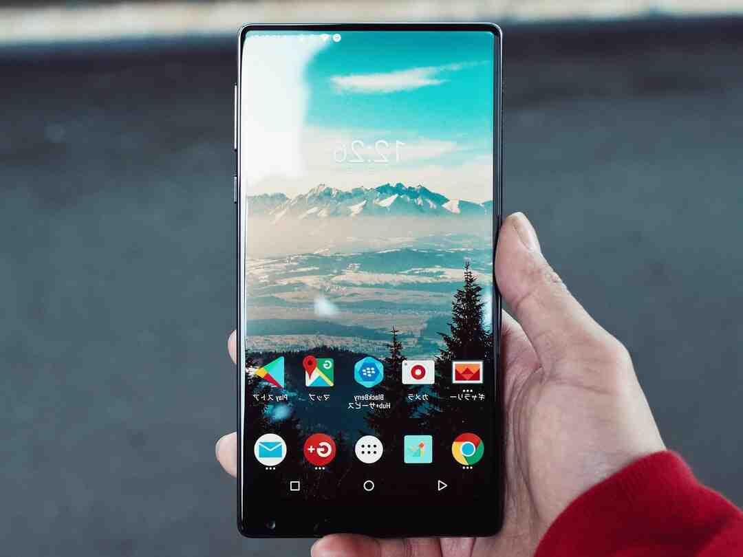 Quelle Xiaomi acheter en 2021 ?