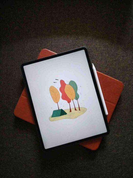Quel est l'iPad PRO le moins cher ?