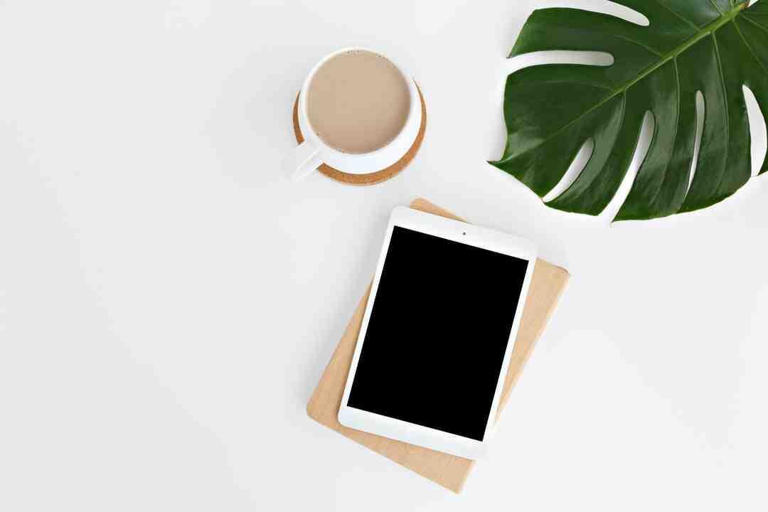 Quel iPad pour iOS 13 ?
